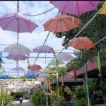Selain menikmati hijaunya hamparan sawah, mata pengunjung juga dimanjakan dengan kombinasi payung warna warni yang bergelantungan. (yandri/kupangterkini.com)