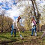 Warga Moskow akan diundang untuk menertibkan berbagai hal di taman, halaman, dan fasilitas sosial
