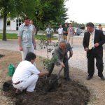 Penemu teknologi EM, Prof Dr Teruo Higa didaulat melakukan penanaman perdana sebuah pohon di sela acara seminar dan EM Fiesta. ( ist)