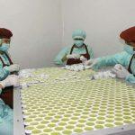Pekerja pabrik EM yang serius menyelesaikan tanggungjawab membereskan kemasan produknya. ( foto: albert kin / kupangterkini.com)